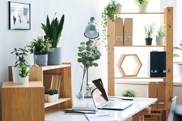 work from home office with plants